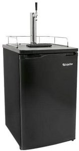 best 5 gallon kegerator